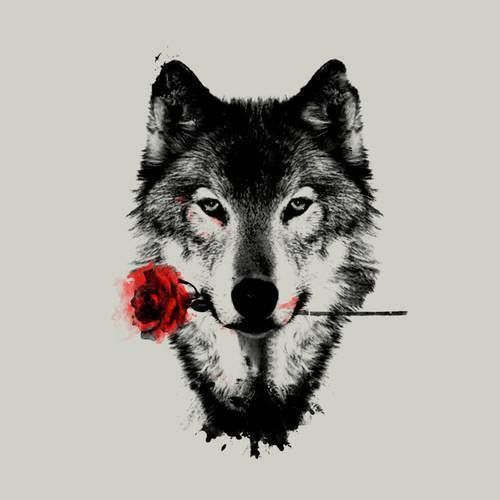 wolf, rose, and art