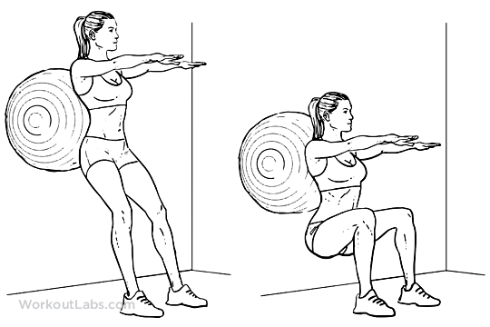 Stability / Swiss / Exercise Ball Squats