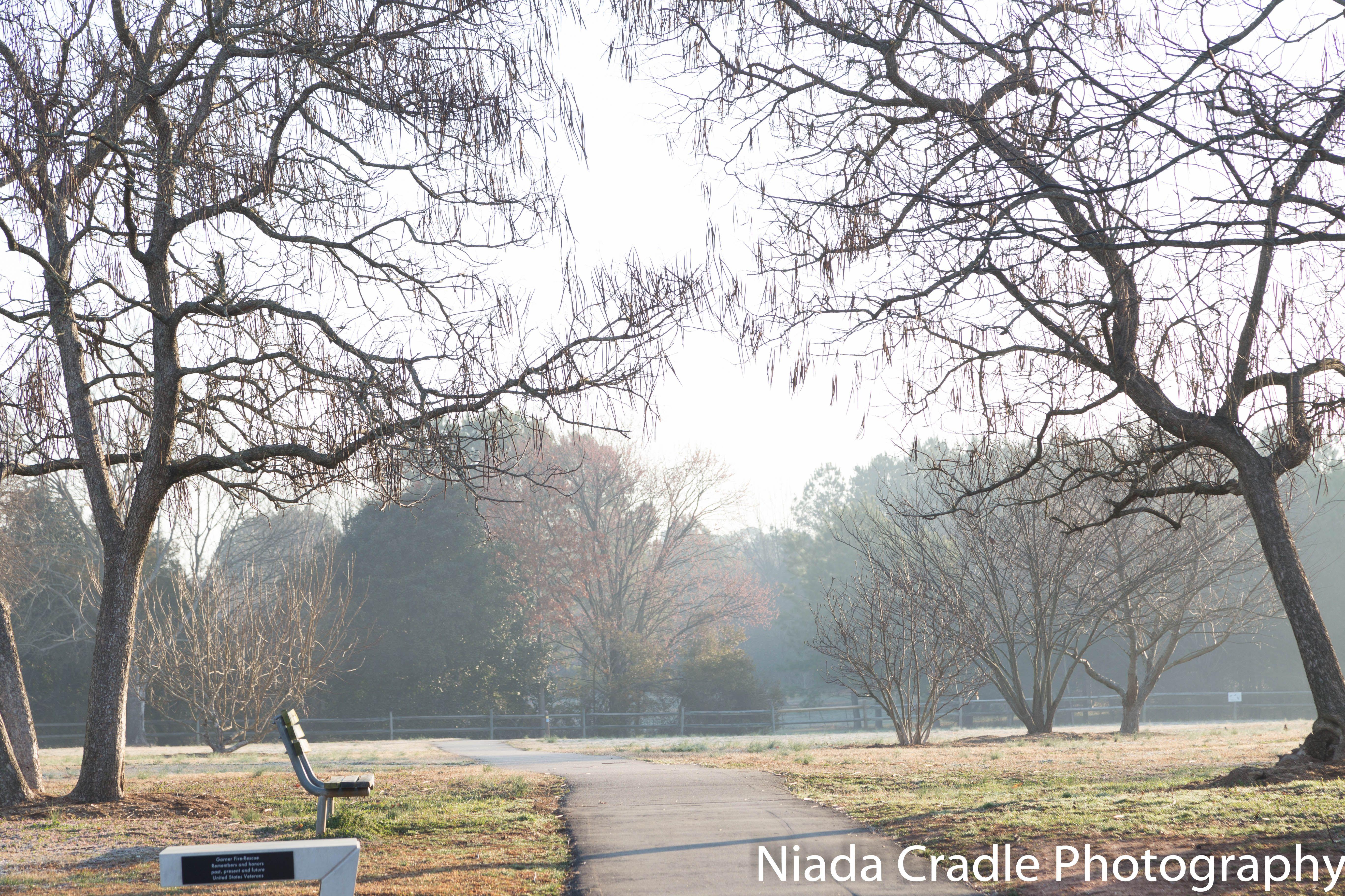 Road less traveled at Memorial park in North Carolina #roadlesstraveled #nature #niadacradlephotography