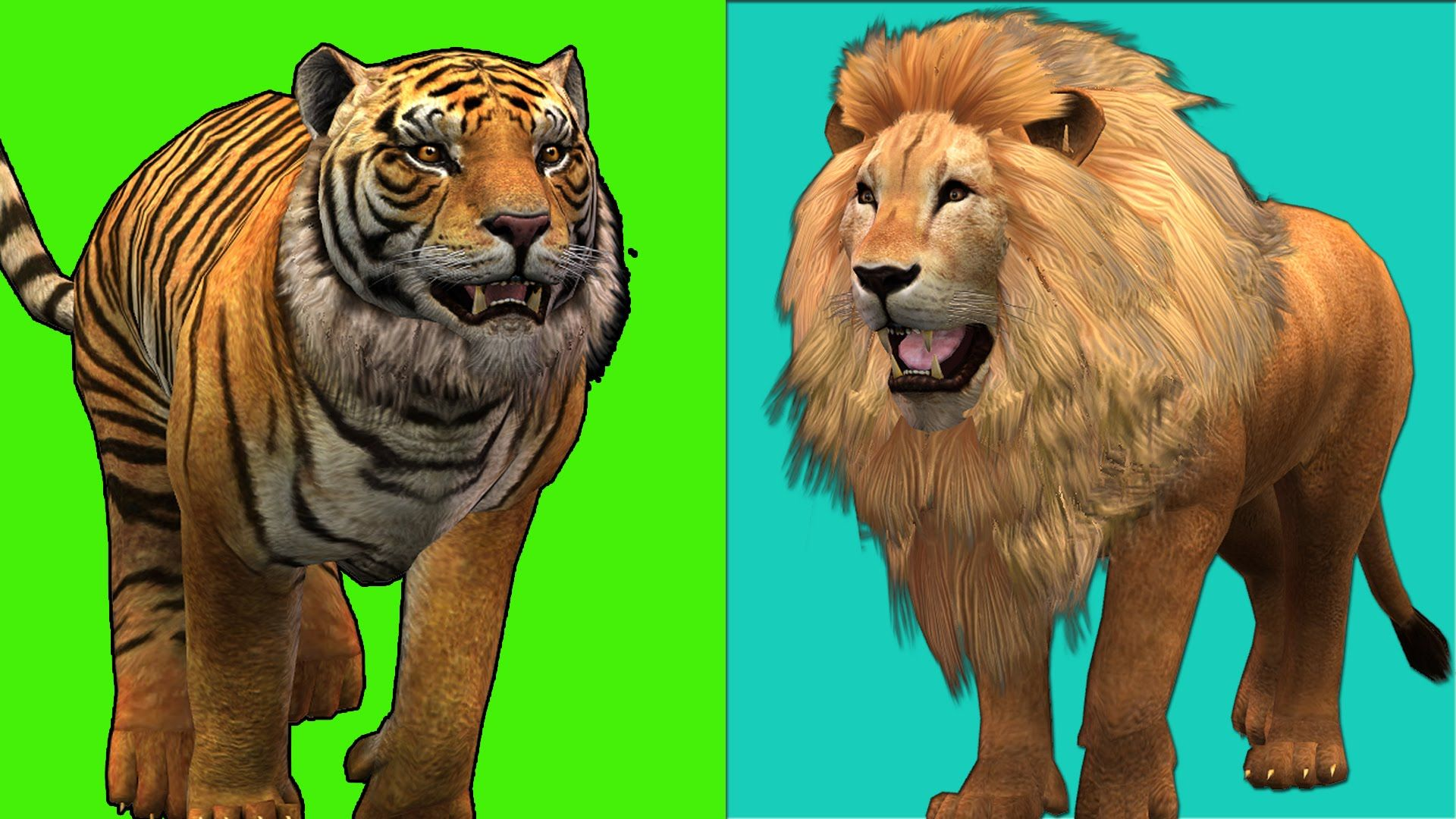 Lion Finger family Song Tiger King Kong Animal cartoon