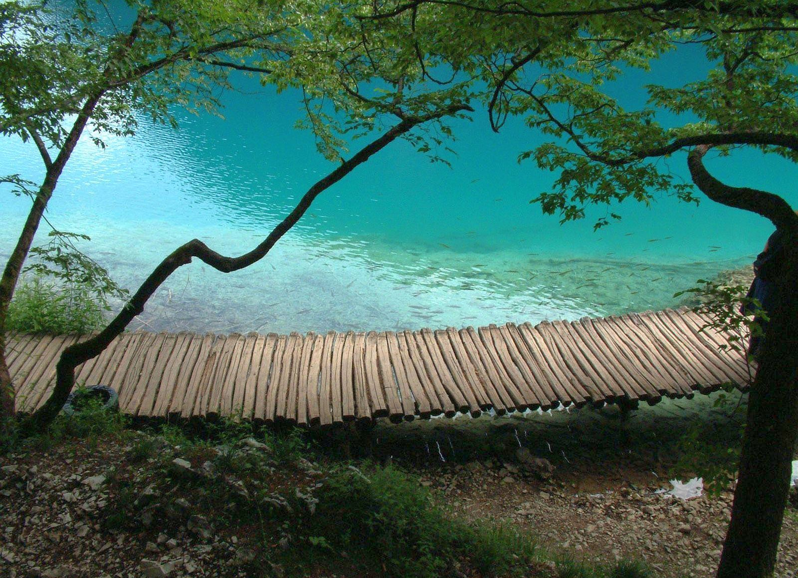 Soothing Peace Of Mind Nature Pictures Peace Of Mind Pictures Green Scenery Plitvice Lakes Lake