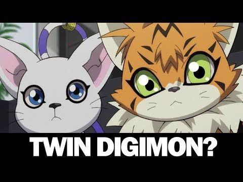 The Relationship Between Gatomon And Meicoomon Digimon Theory Youtube Digimon Digimon Adventure Tri Digimon Adventure