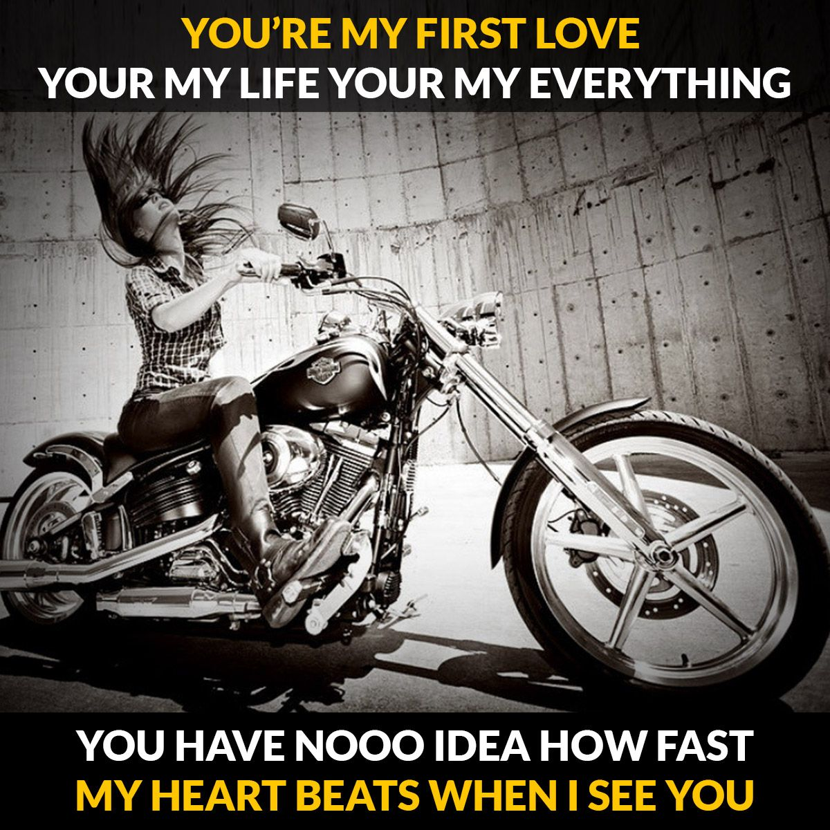 Bike lover harley davidson knucklehead harley davidson