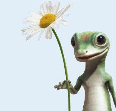 The Geico Gecko Gecko Animals