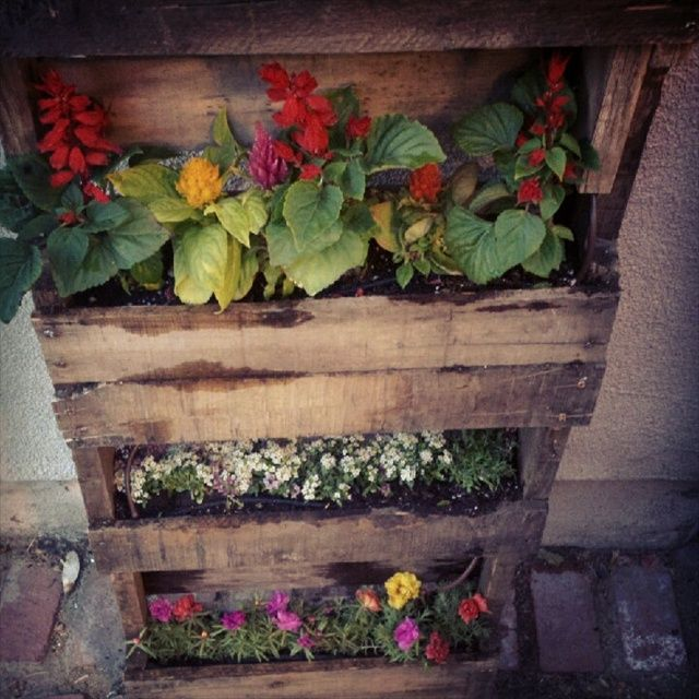 Step By Step Instructions For Vertical Pallet Garden Pallets
