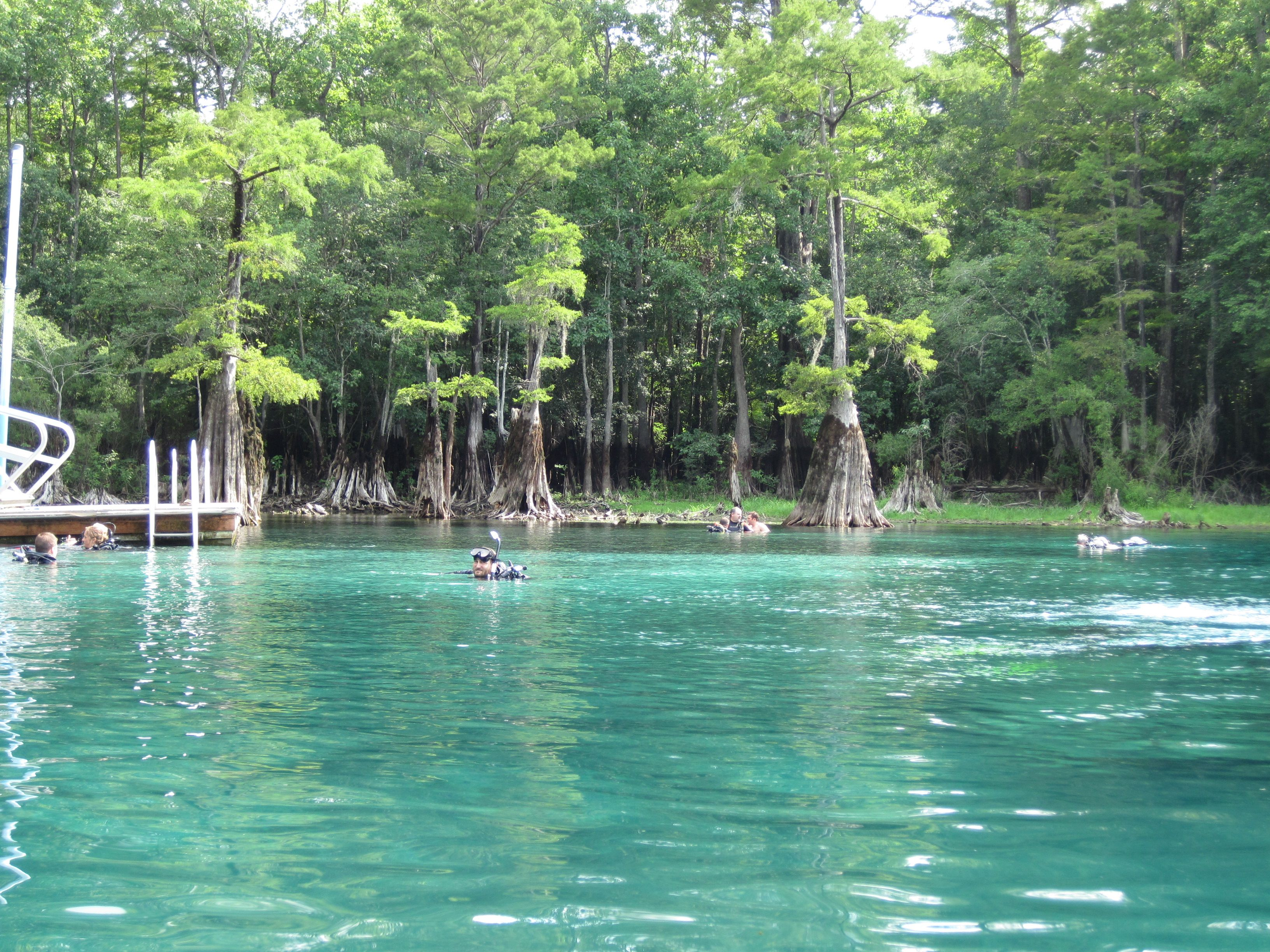 Morrison Springs Nw Fl I Took My Certification Dive There