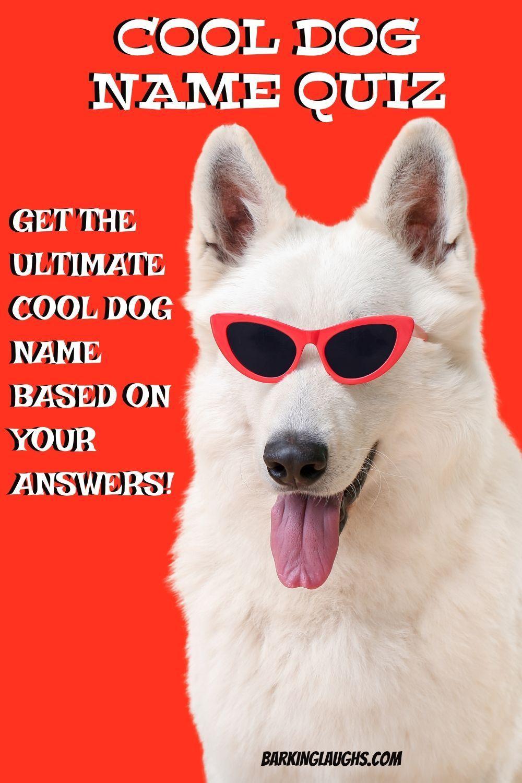 Pin on Popular Dog Names Male Dog Names Female Dog Names