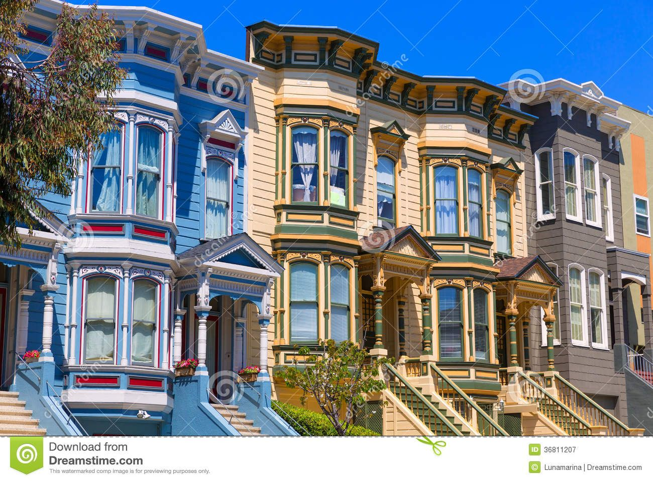 San francisco victorian houses in pacific heights for Houses in san francisco