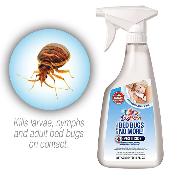 Bed Bugs No More! Pesticide Kills Bed Bugs On Contact!