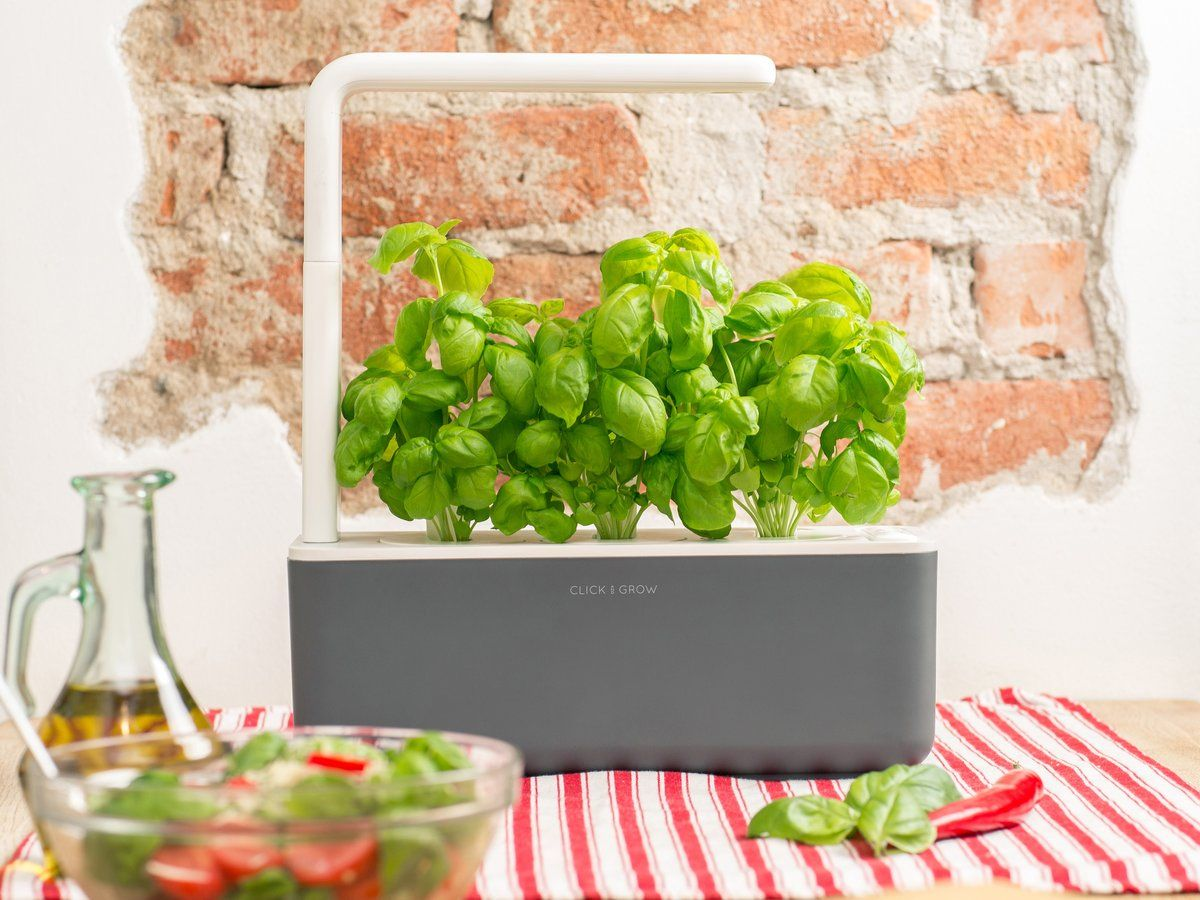The Smart Garden 3 With Images Smart Garden Vegetable 400 x 300