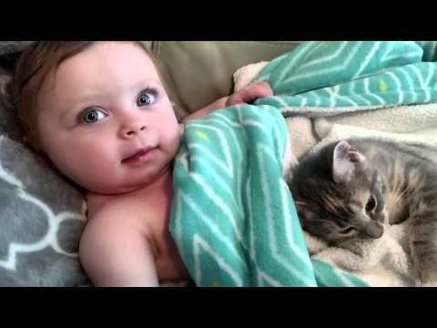 【癒されすぎ注意】40秒でこの癒し力!!! 赤ちゃんと子ネコのあまりに可愛すぎるお昼寝風景 | Pouch[ポーチ]