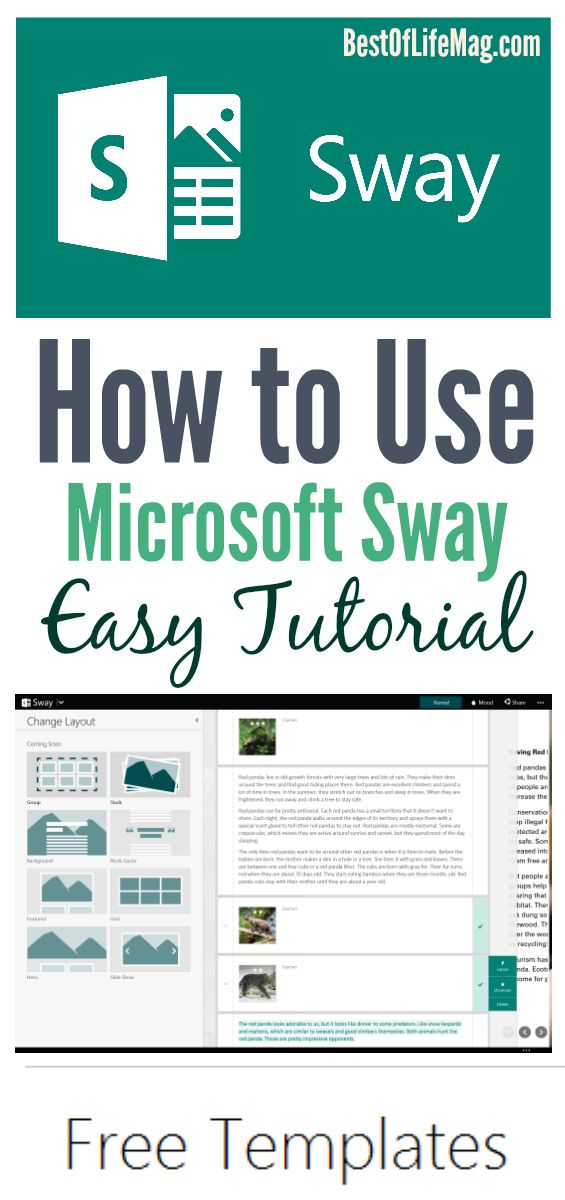 Wondering how to use Microsoft Sway? This tech tutorial will guide
