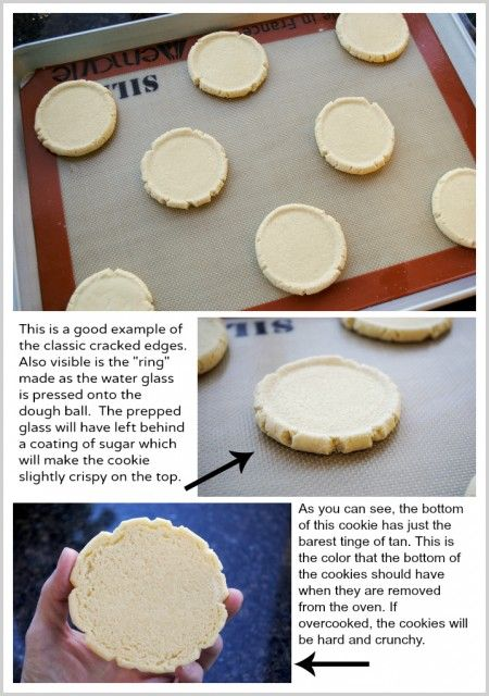 Swig Style Sugar Cookie Recipe Recipe Sugar Cookies Recipe Swig Sugar Cookie Recipe Swig Sugar Cookies
