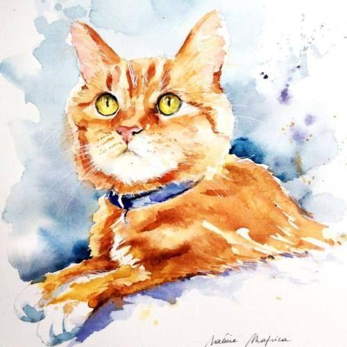 Aquarelle Originale Original Watercolor Cat Chat Roux Au Collier