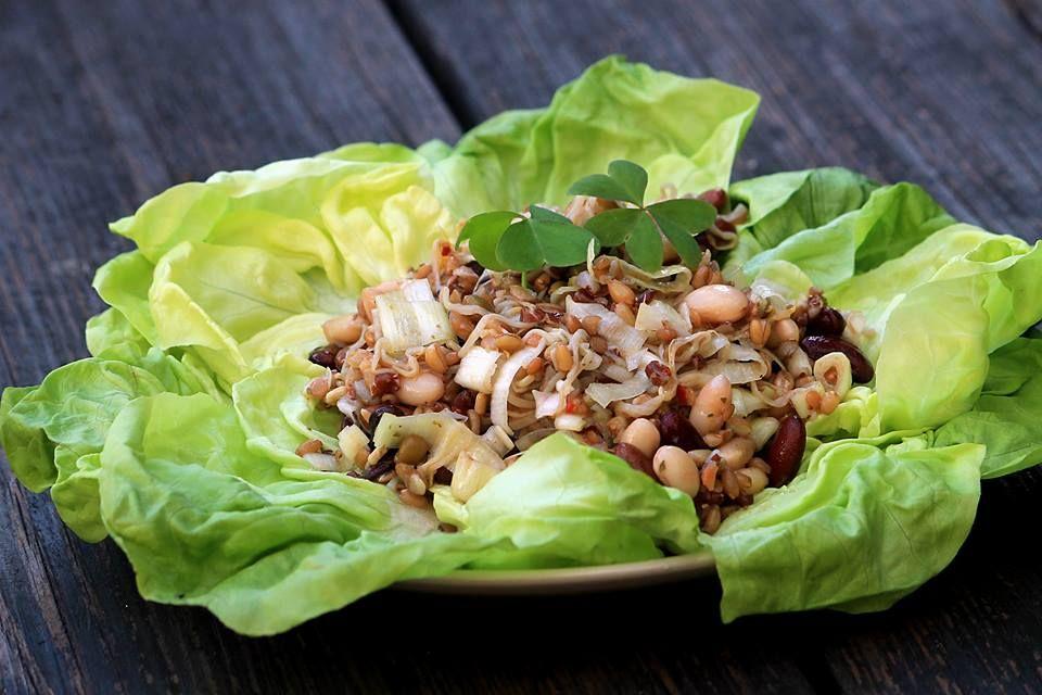 Linsen-Power-Salat