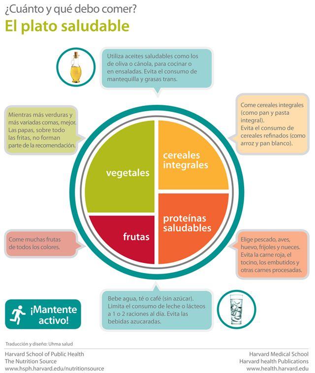 dieta variada y equilibrada traduccion