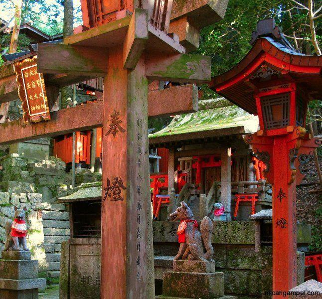 fushimi-inari-shrine-kyoto-micah-gampel-2010-2.jpg 646×600 pixels