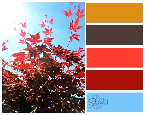 Color Combo japanese maple color combo | color inspiration | pinterest | color