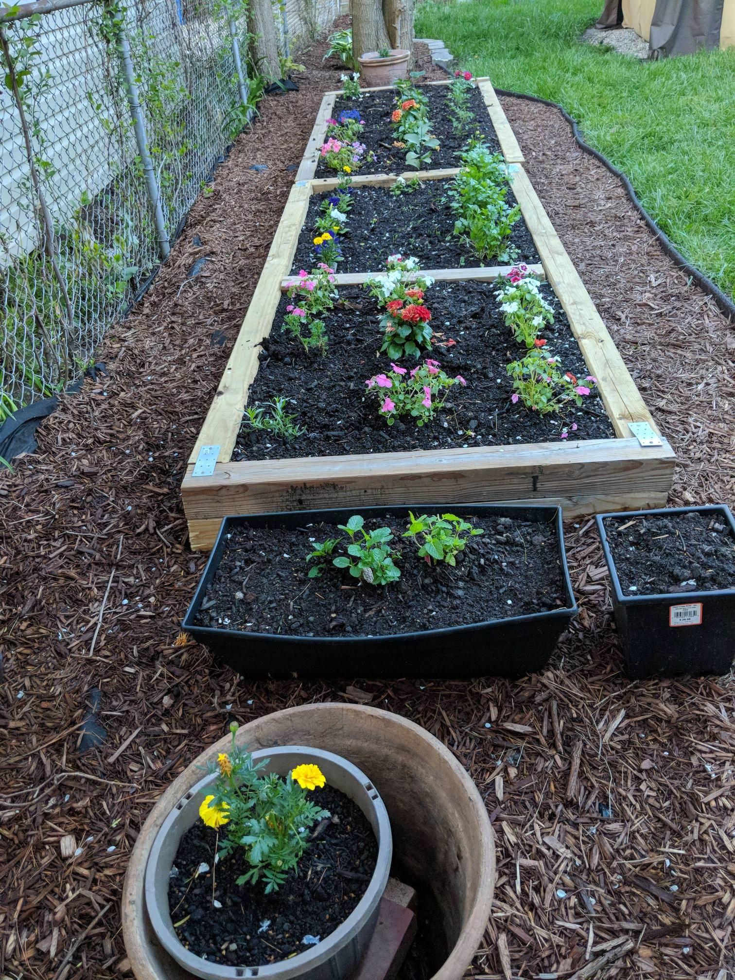 My raised bed garden #gardening #garden #DIY #home # ...