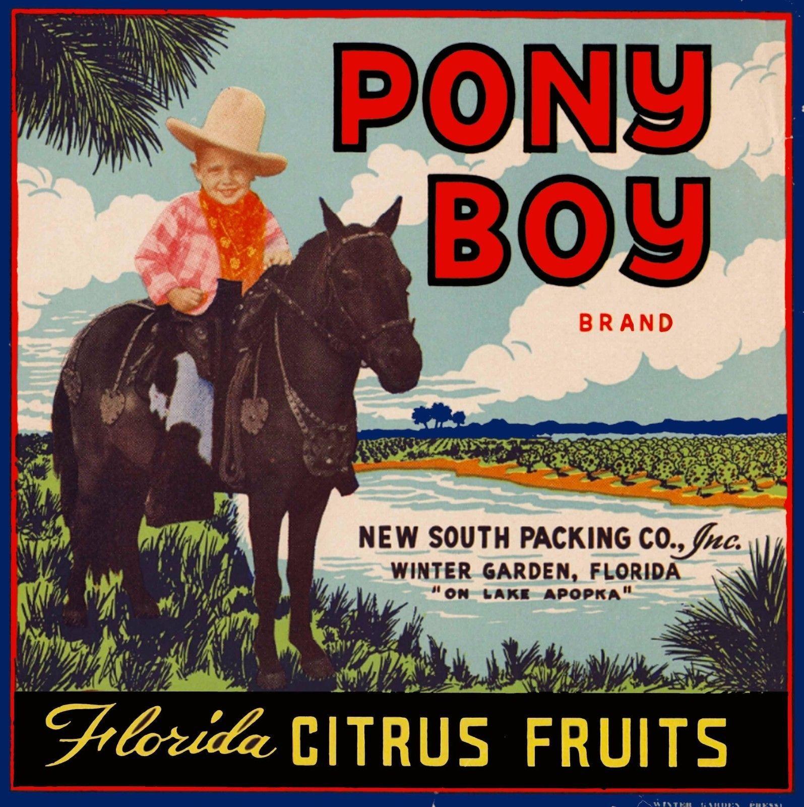 winter garden florida pony boy brand orange citrus fruit crate