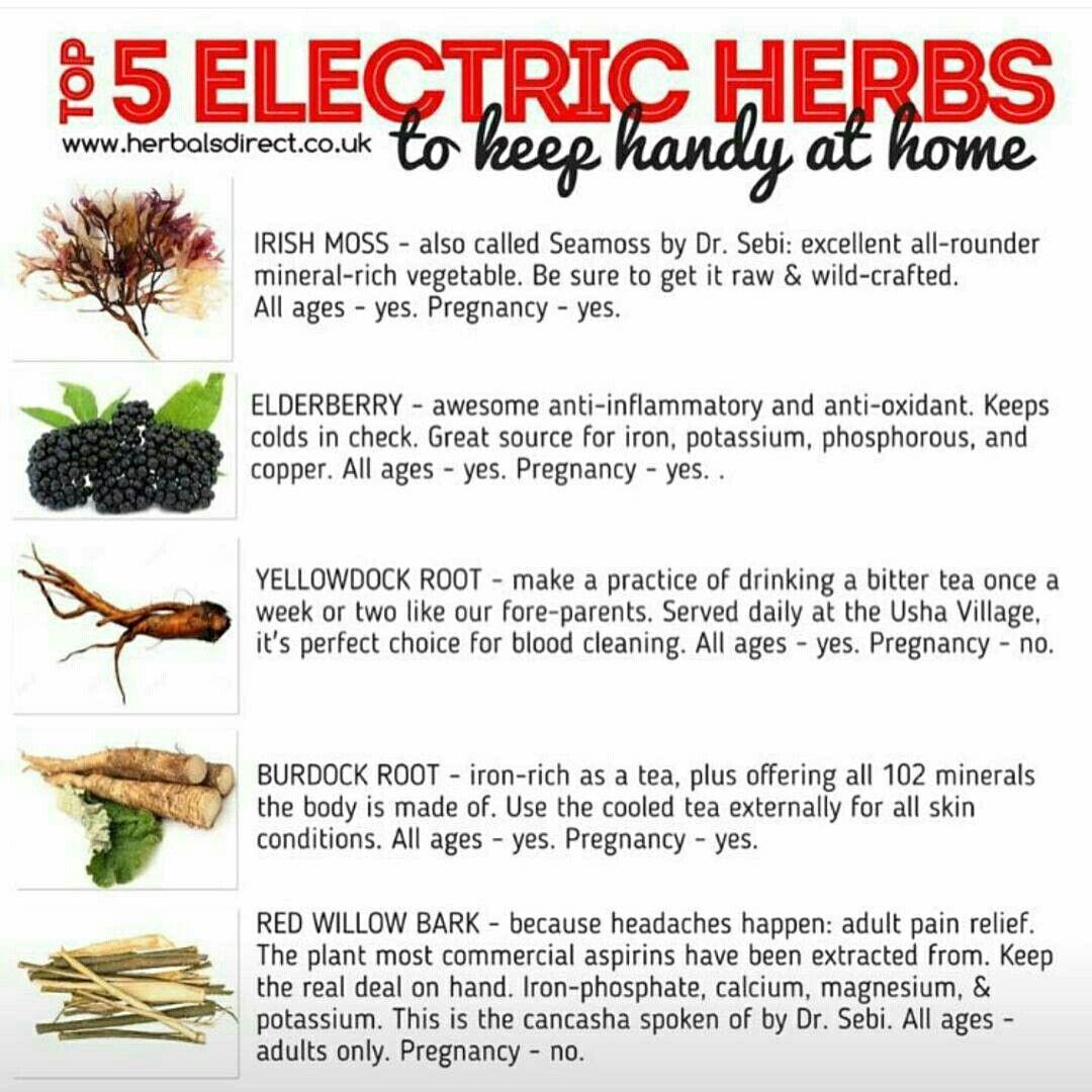 Electric herbs. Irish moss, burdock, yellow dock