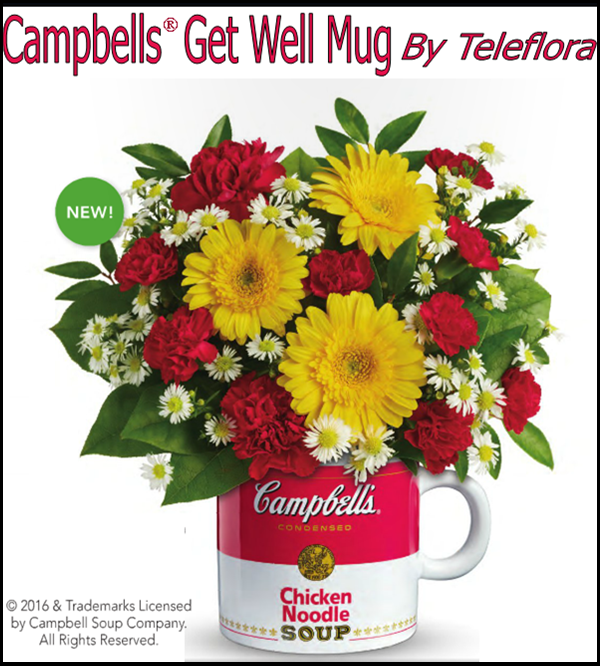 Teleflora special Coming in November 2016 ! Get well
