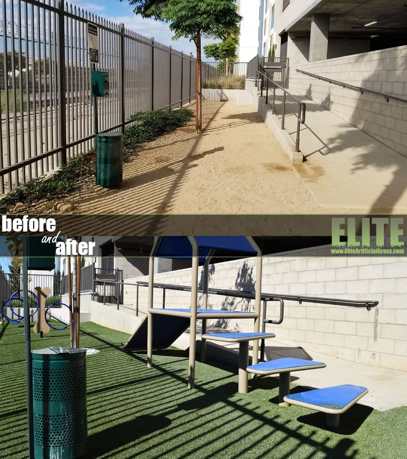 Pin by Elite Artificial Grass on Dog & Pet Turf Fake