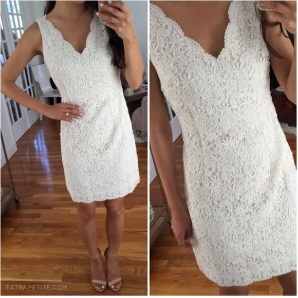 Ann Taylor Fl Lace Dress Brand New With Tag Available In Size 6p And 4 Regular Disclosure First Pic Doesn T Belong To