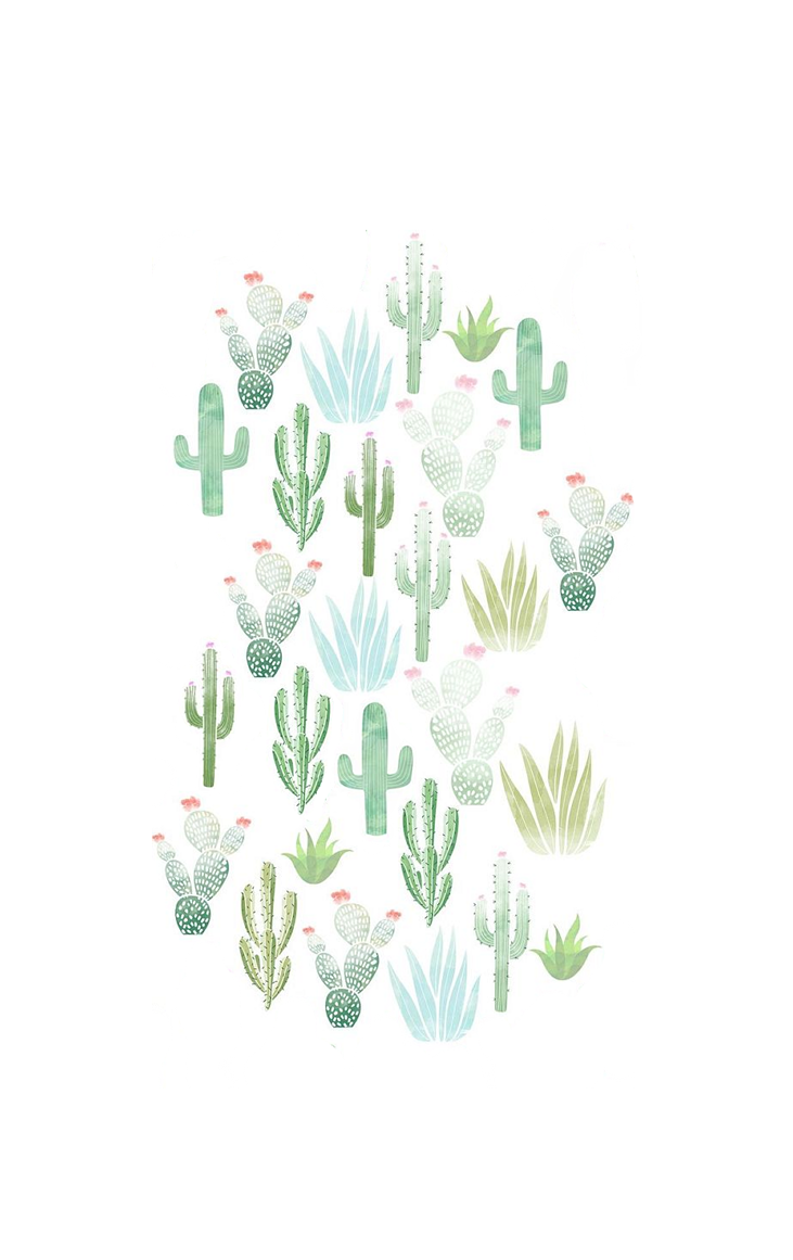 Cactus Wallpaper Cute Cactus Backgrounds Flower Phone Wallpaper Art Wallpaper