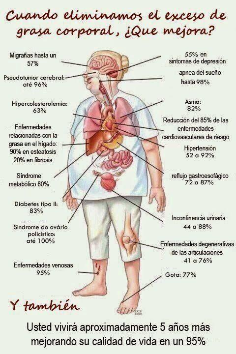 Cuando eliminamos el exceso de grasa corporal, ¿Que mejora en nuestro cuerpo?.