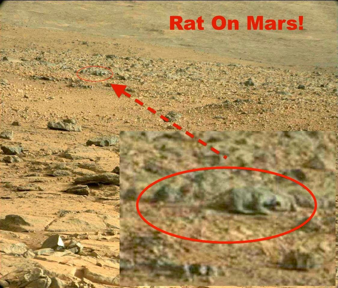 Image result for mars city face