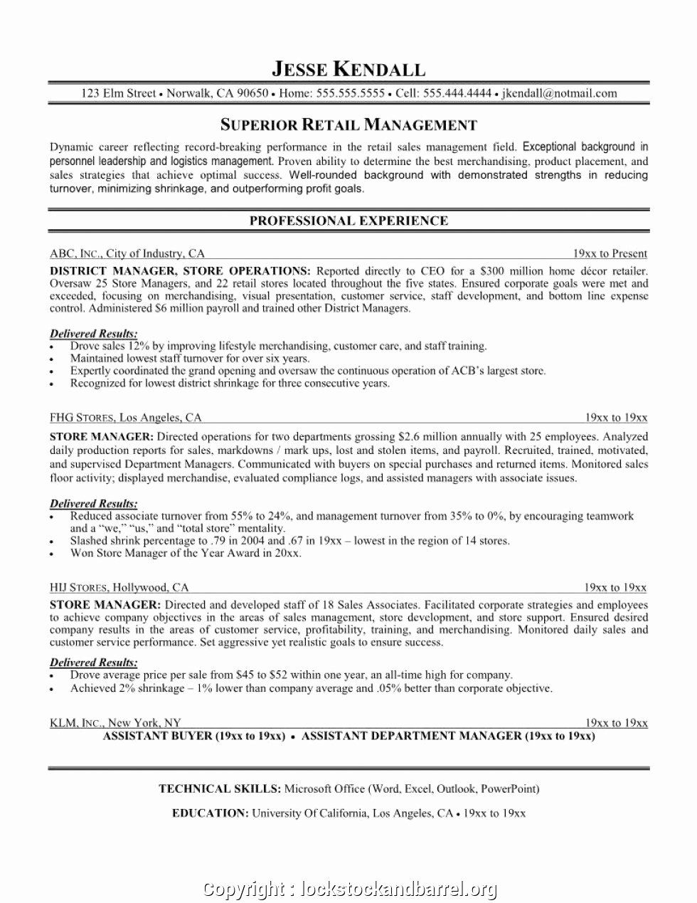 23 Resume Summary Examples for Retail in 2020 Retail