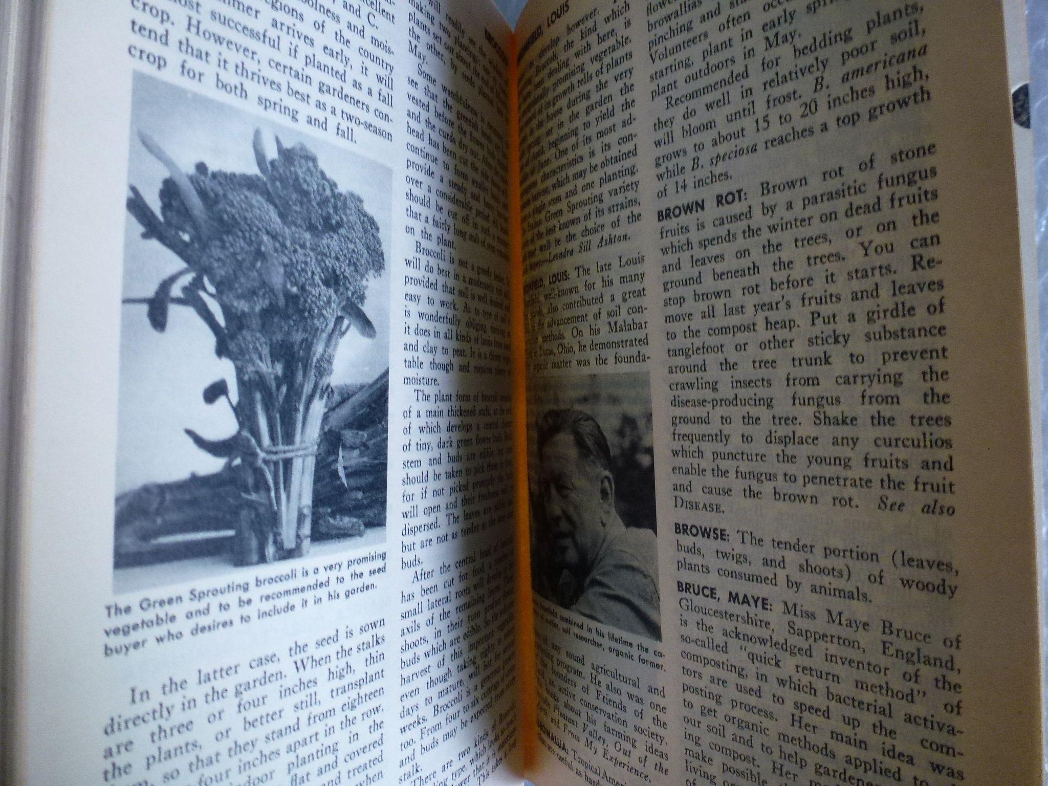 Encyclopedia Of Organic Gardening 1959 Compilation Sup Jerome Olds