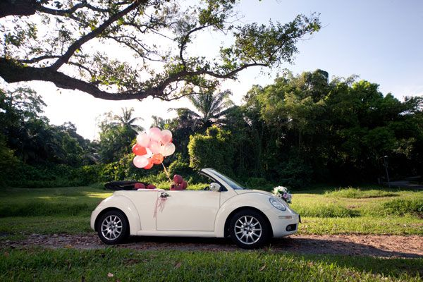 Amazing New Beetle Wedding
