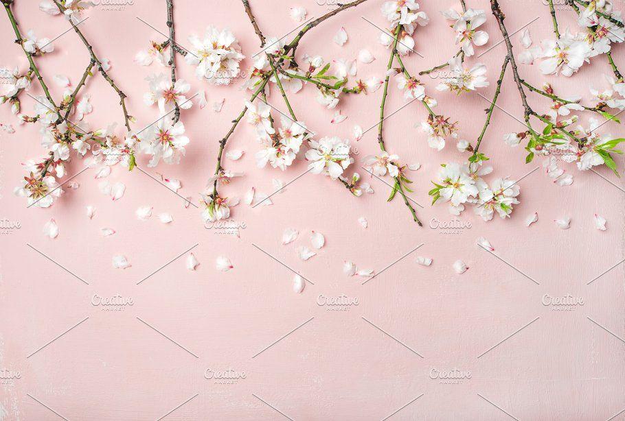 Spring Almond Blossom Flowers And Petals Over Light Pink Background Vintage Flower Backgrounds Blossom Flower Floral Background