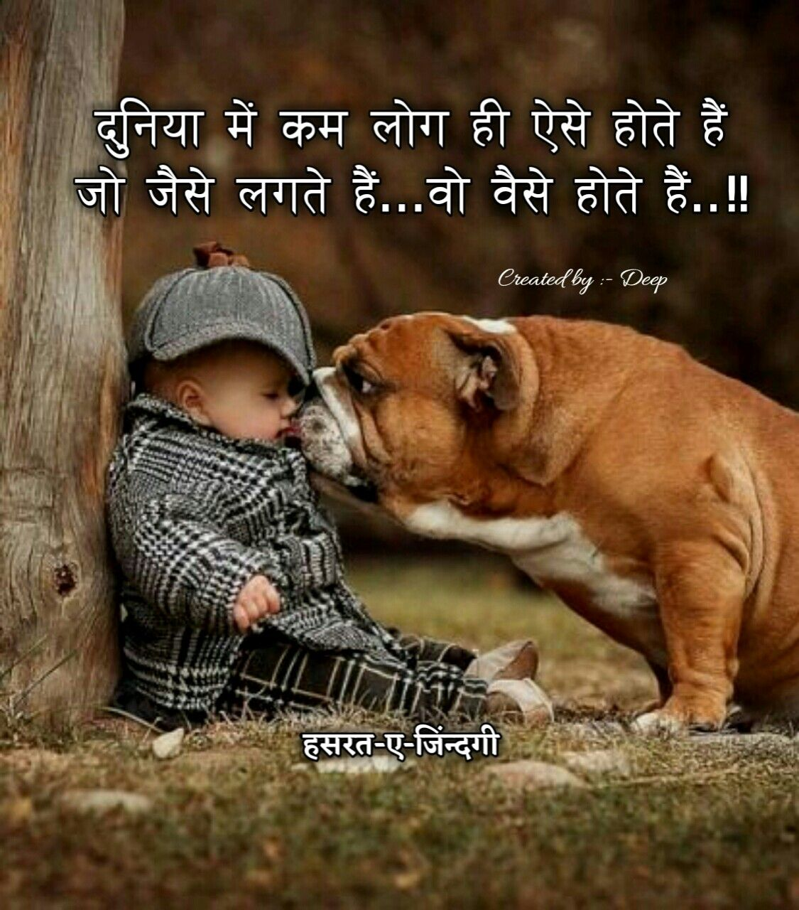 Pin By Mira On Hindi Pinterest Cute Animals Cute And Animals