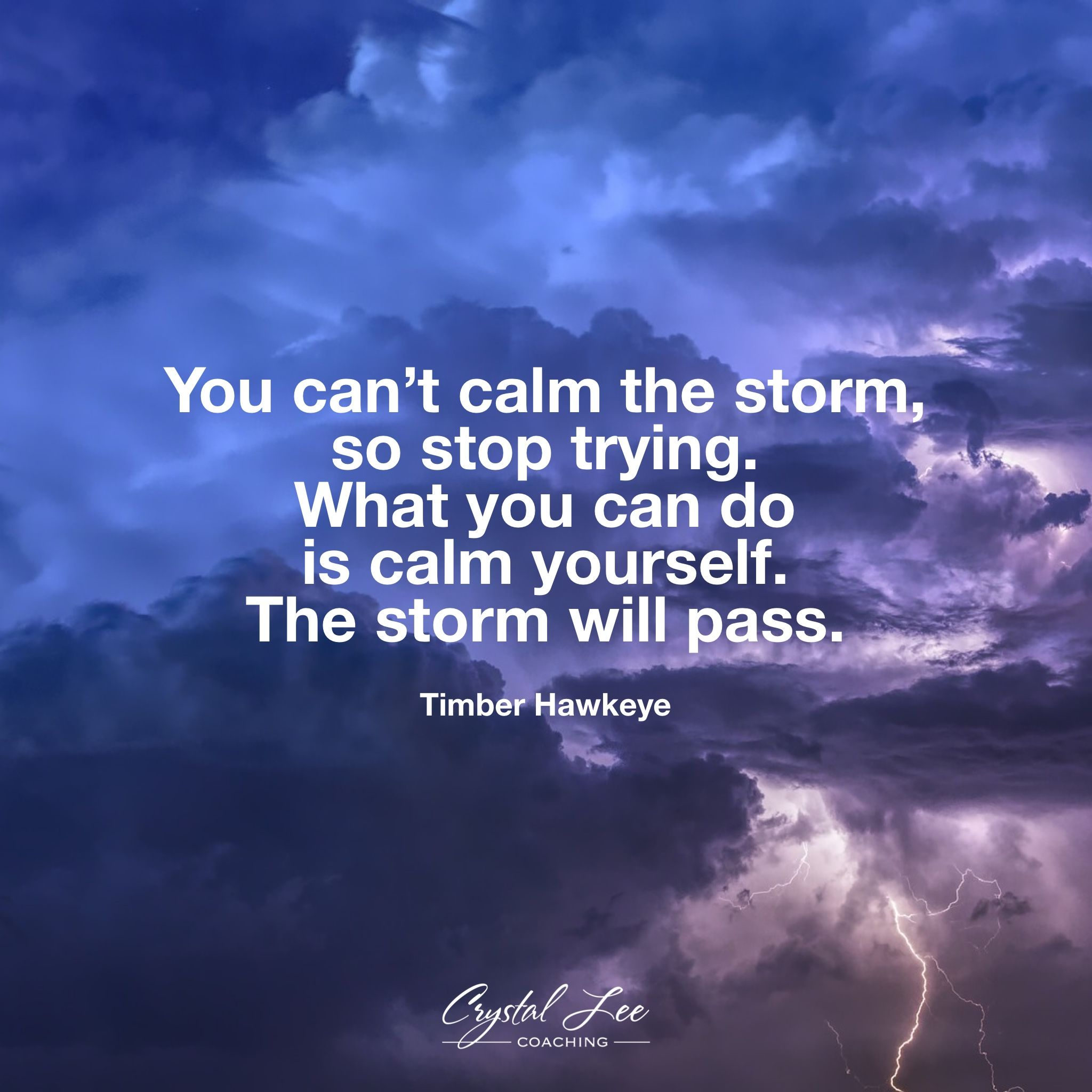 You Can T Calm The Storm So Stop Trying What You Can Do Is Calm Yourself The Storm Will Pass Calming The Storm What You Can Do Quotes
