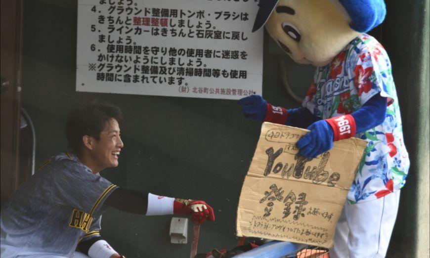 ドアラが阪神ベンチに売り込み 木浪youtube登録 2020 画像あり