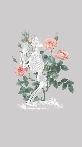 Plis Men Skull Wallpaper Aesthetic Iphone Wallpaper