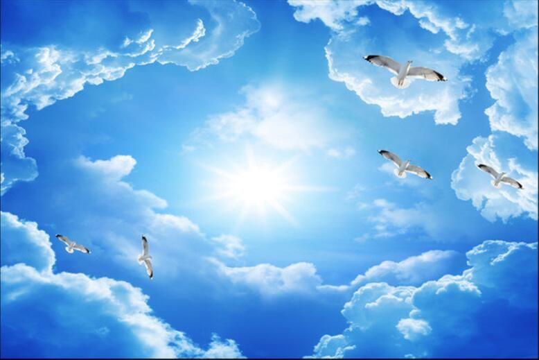 رخيصة 3d خلفيات مخصصة غير المنسوجة جدار ملصقا السماء الزرقاء سحابة بيضاء من الطيور سقف الجداريات 3d جدار غرفة جداريات Sky Ceiling Blue Sky Mural Ceiling Murals