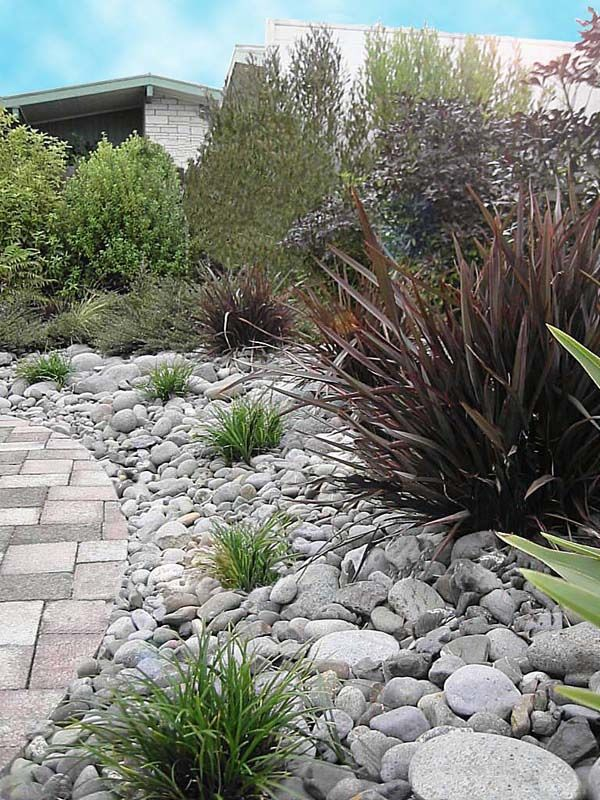 Low maintenance garden nz google search desert garden for Low maintenance backyard