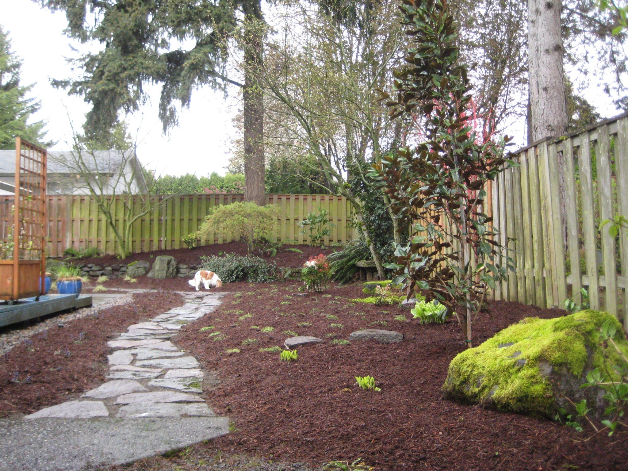 Backyard Ideas For Dogs perfect turf dog runs 1 no muddy paws 2 much easier to This Is What I Want To Do In My Yard
