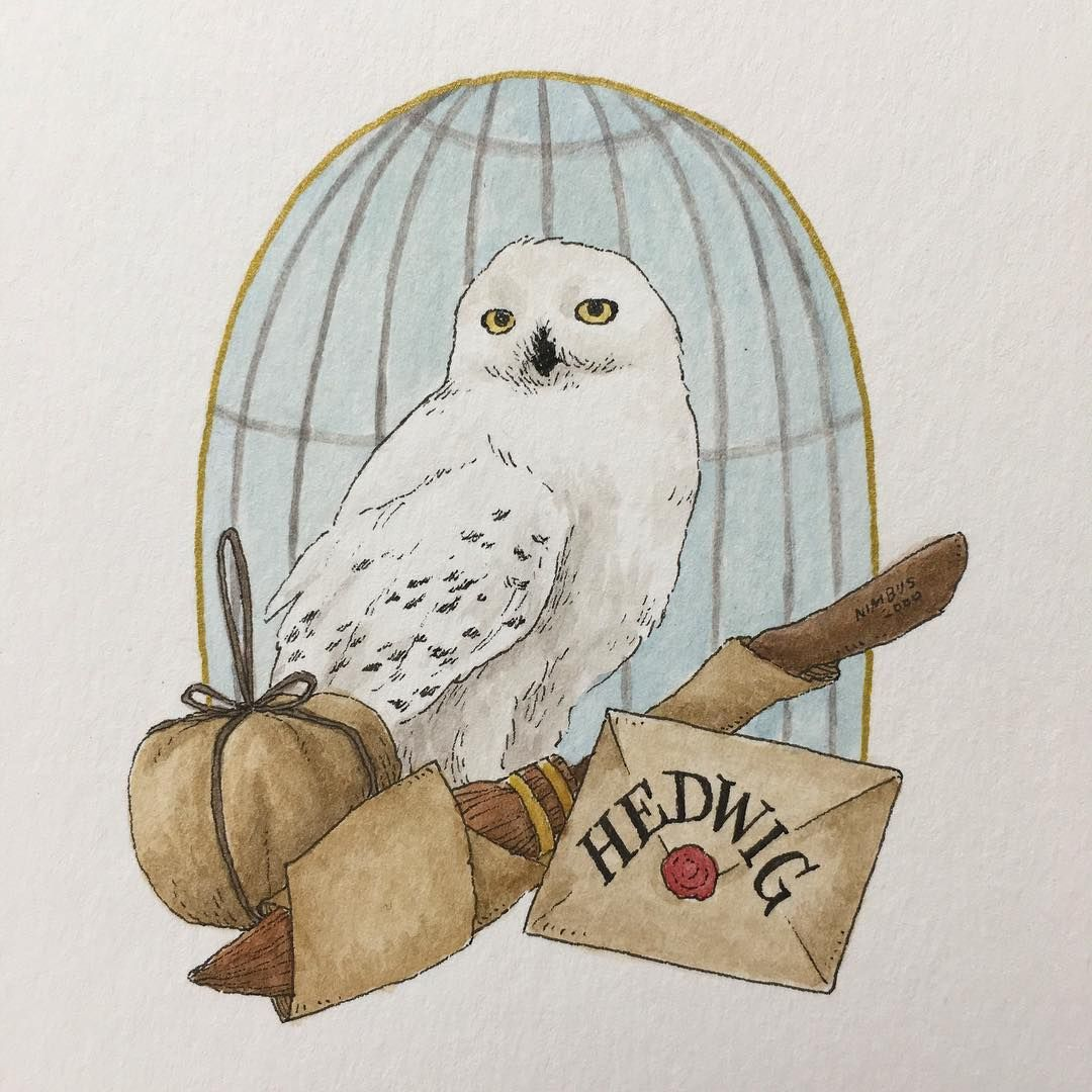 A loyal friend hedwig harrypotter 31daysofharrypotter 31daysofharry potterportraits - Harry potter dessin ...