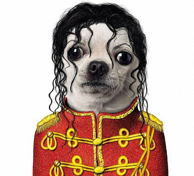 Dibujos Caras De Perros Buscar Con Google Perros Dibujo