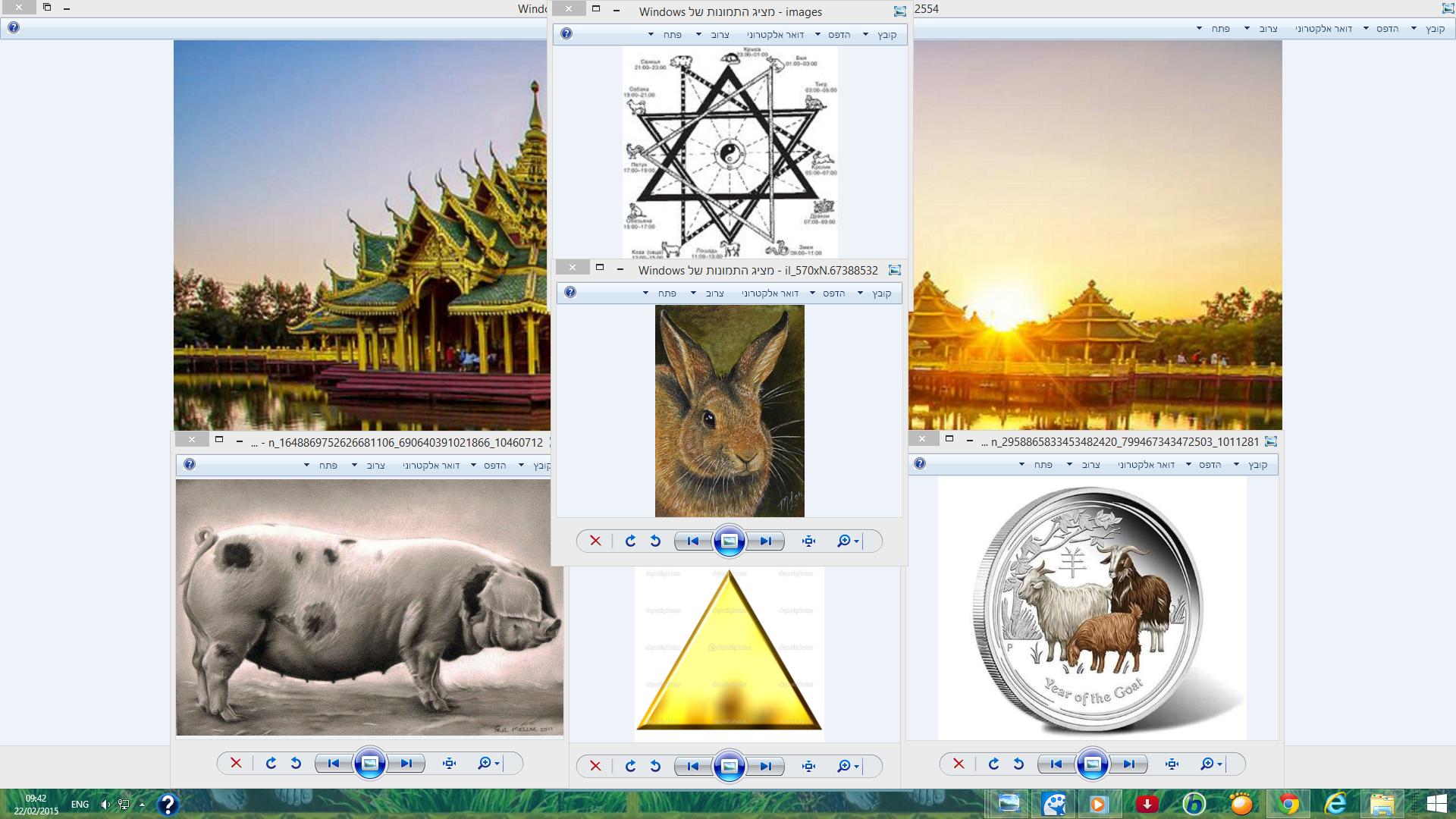 """兔年 羊年 豬年 Chinese Astrology """"Golden Triangle"""" Animals that"""
