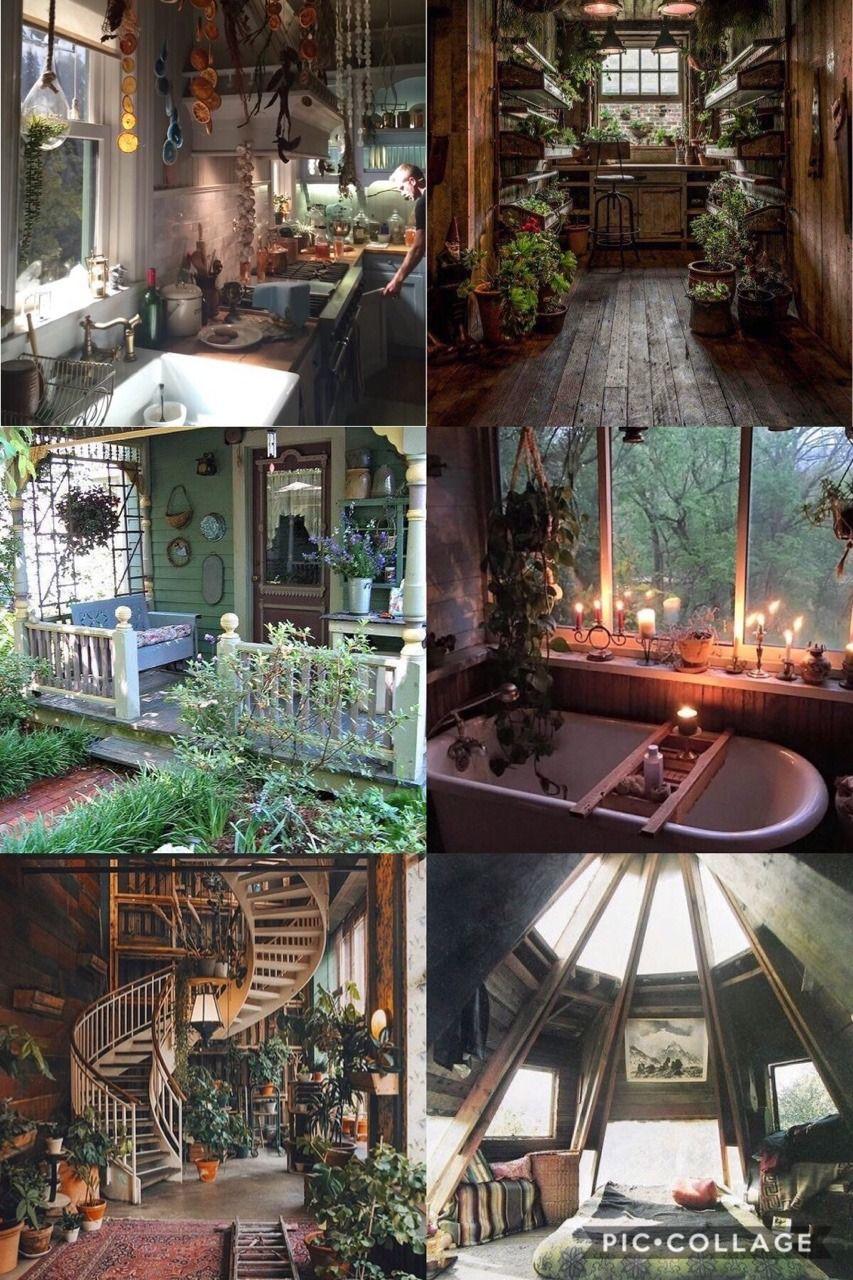 Plant Aesthetic Room Decor