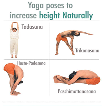 tadasana  increase height exercise easy yoga poses