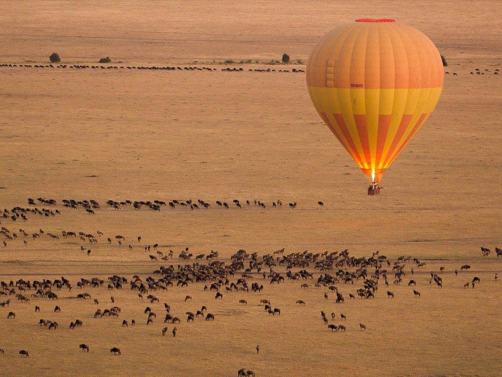 Hot air balloons in Kenya's Maasai Mara National Reserve
