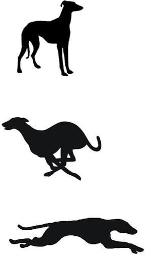 Image Result For Free Greyhound Embroidery Templates Illustrations