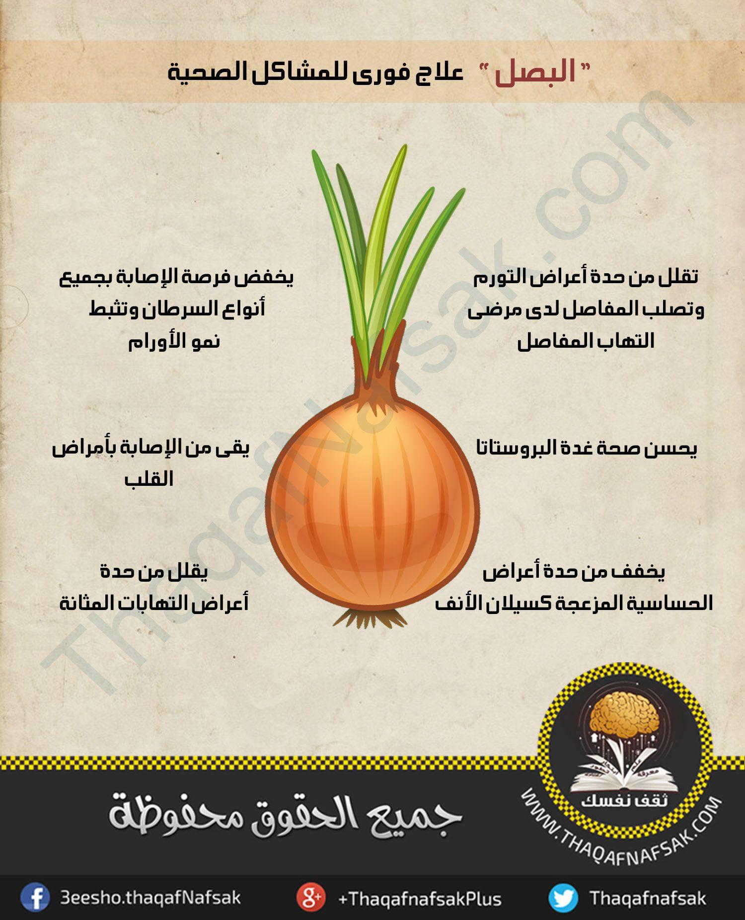 انفوجرافيك فوائد البصل في علاج بعض الامراض فوريا Fruit Cantaloupe